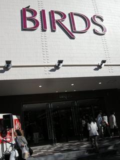 BIRDStop.JPG
