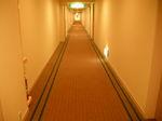 箱根ホテル小涌園4.JPG