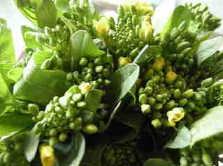 菜の花からし和え01.JPG