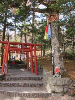 金運神社top.jpg