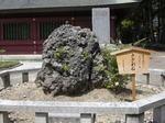 笠間稲荷神社11.JPG