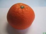 鶏肉のオレンジ(はっさく)煮1.jpg