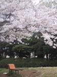 港南台北公園10.jpg
