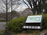 港南台北公園2010さくらtop.JPG