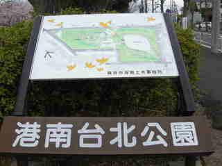 港南台北公園 2012 さくら02.JPG